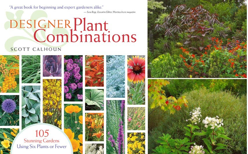 book recommendations plant combinations thinking On designer plant combinations