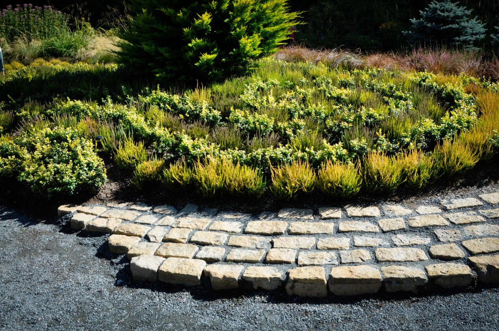 swirled heather planting and cobble stone, Thinking Outside the Boxwood