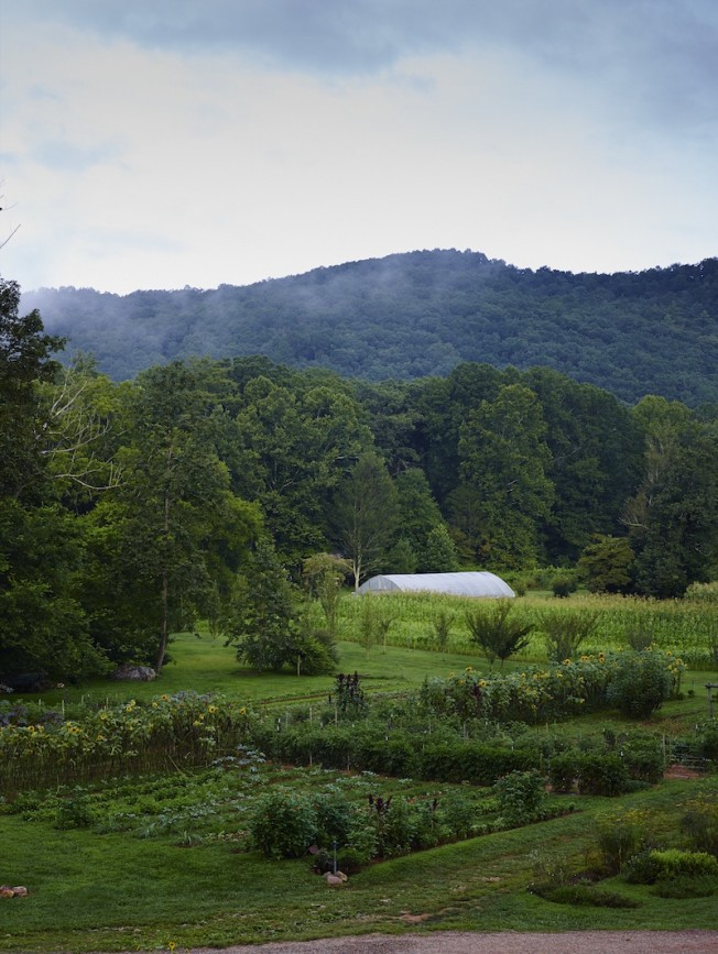Posh Agritourism-Blackberry Farm- Thinking Outside the Boxwood