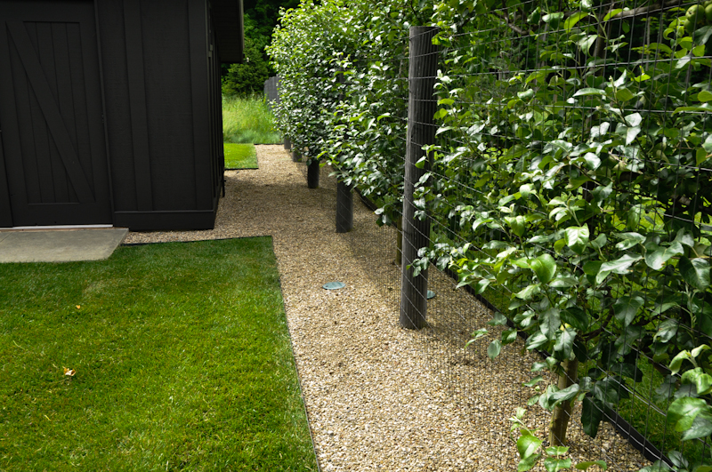 The Benefits of an Edge, Thinking Outside the Boxwood, Metal edging separating pea gravel and turf