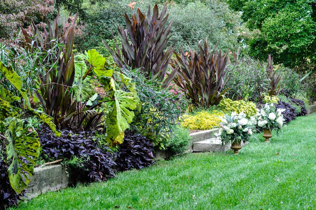 Yew Dell Botanical Garden Visit, Thinking Outside the Boxwood, Tropical Border