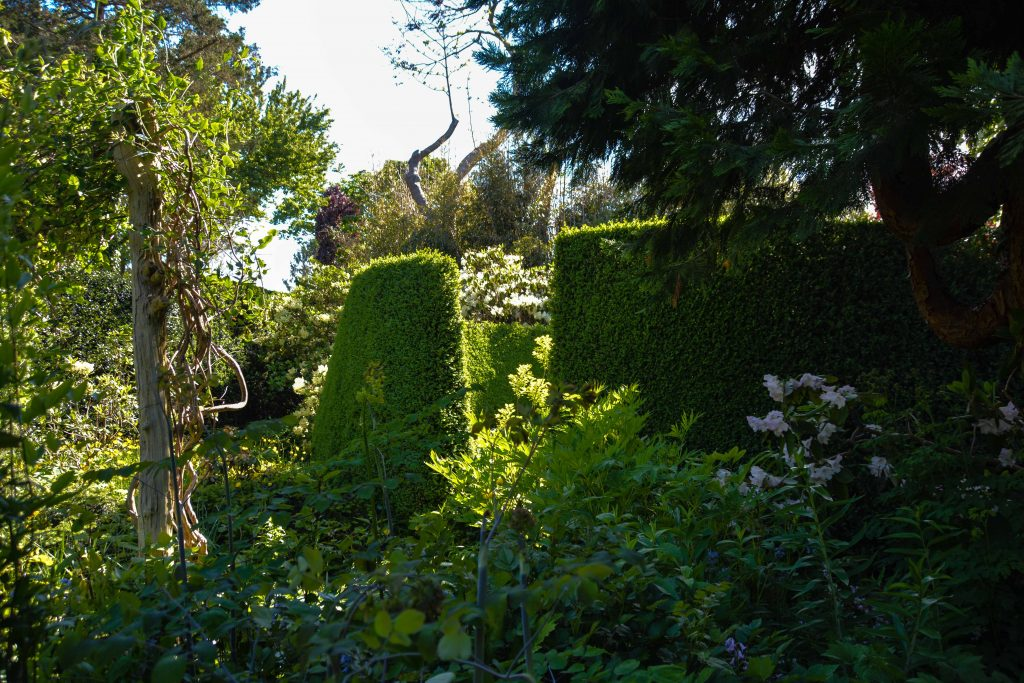 Sakonnet Garden. Little Compton, RI Designed and Maintained by John Gwynne and Mikel Folcarelli Photographic tour from Thinkingoutsidetheboxwood.com