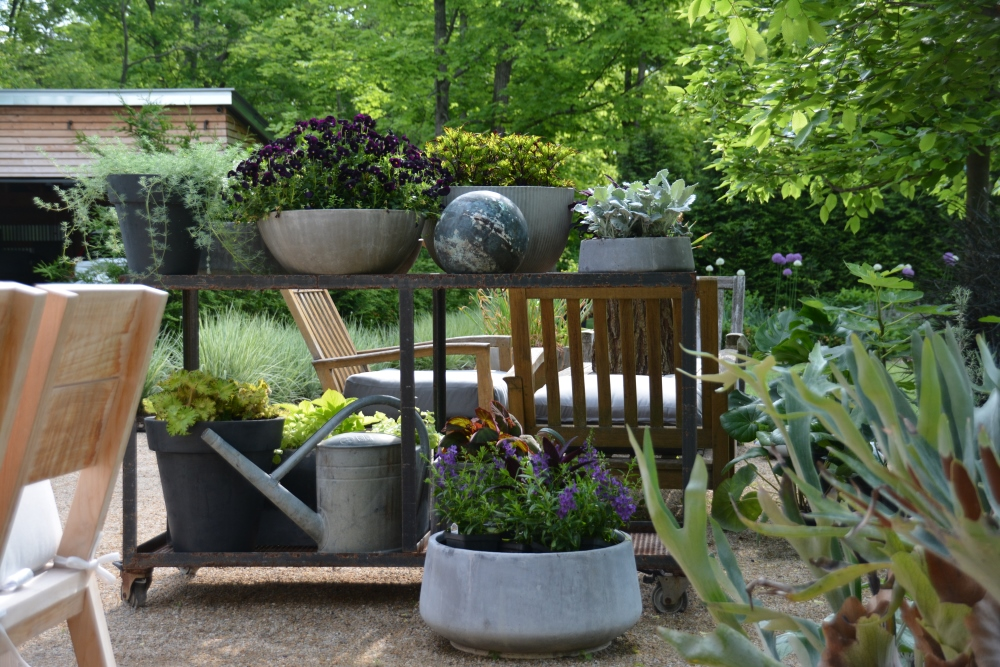 Curated collection of mono plant container designs creating a room divider in the garden. Thinking Outside the Boxwood