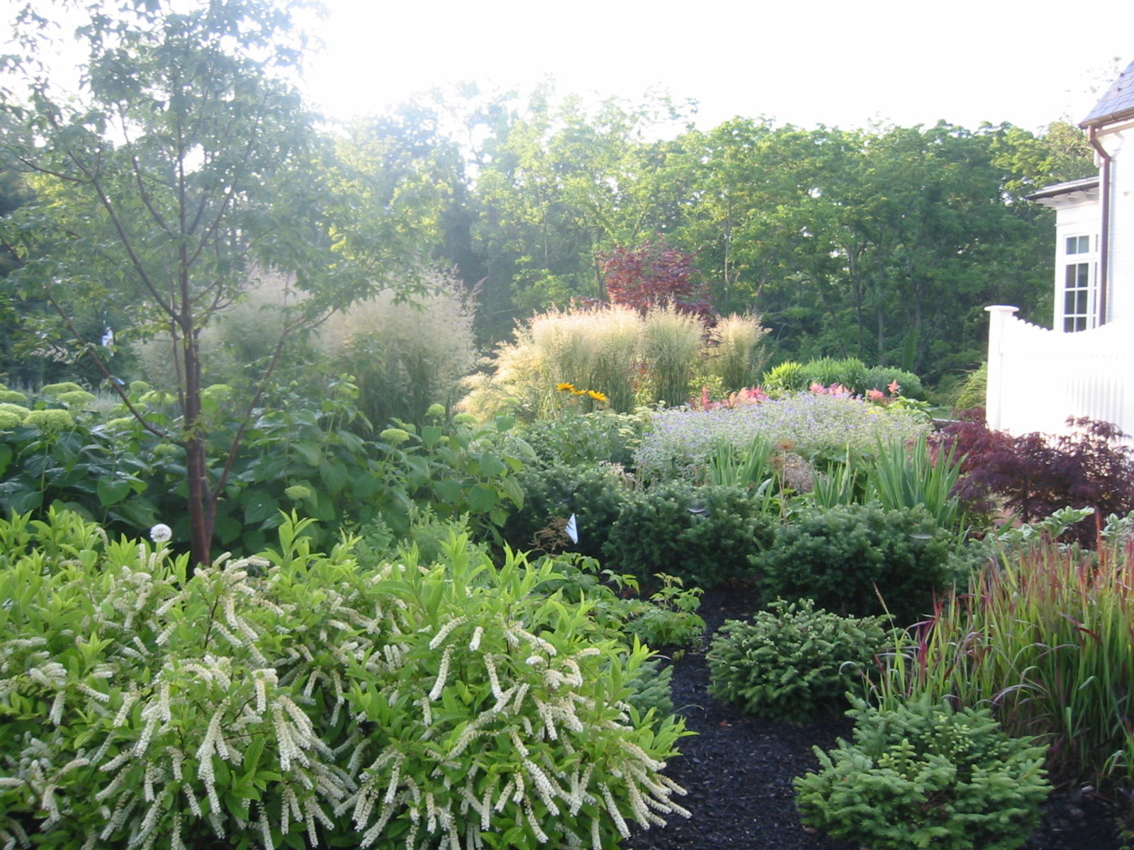 Swing for the Fences, Thinking Outside the Boxwood