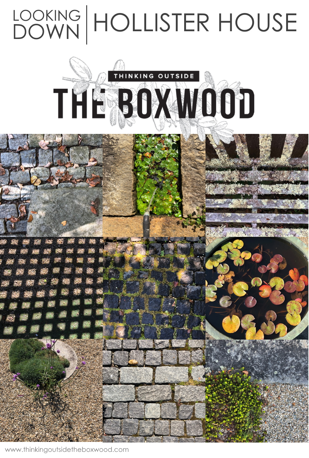 The Traveling Garden Designer - Hollister House Looking down | Thinking Outiside the Boxwood