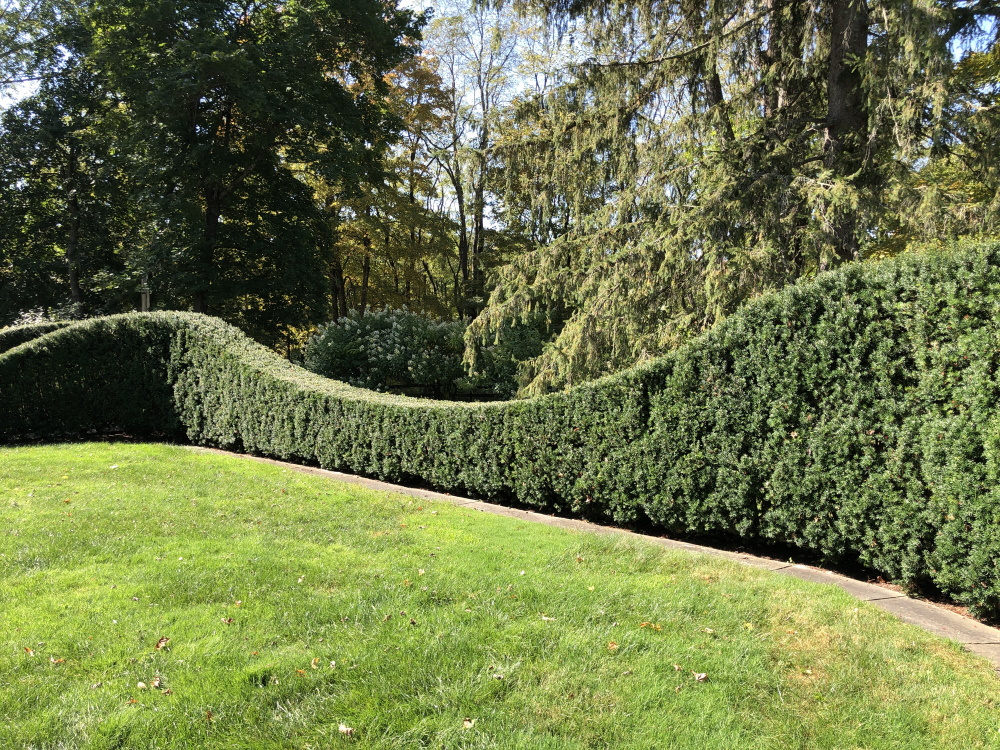 Touring Bunny Williams Garden in September, from Thinking Outside the Boxwood