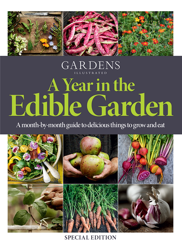 Garden Illustrated A Year in the Edible Garden - Great Resources for Edible Gardening - Thinking Outside the Boxwood