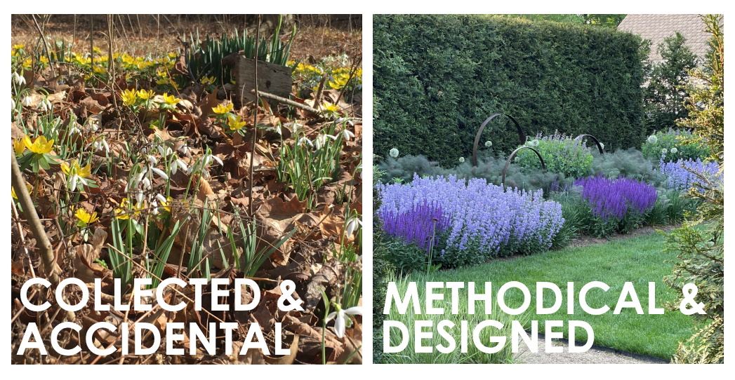 I have two bulb planting strategies: collected/accidental and methodical/designed.